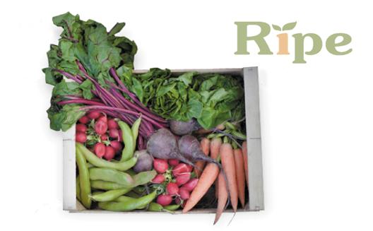 Feeding Demand for Local, Organic Produce in the Arab World: Dubai's Ripe
