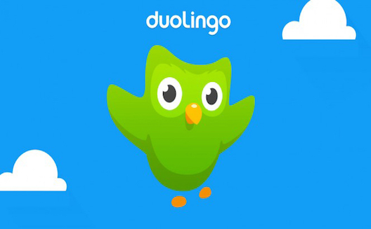 Language learning platform Duolingo launches in the Arab world