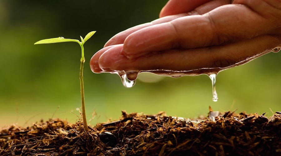 Arzan VC announces a pre-seed funding platform