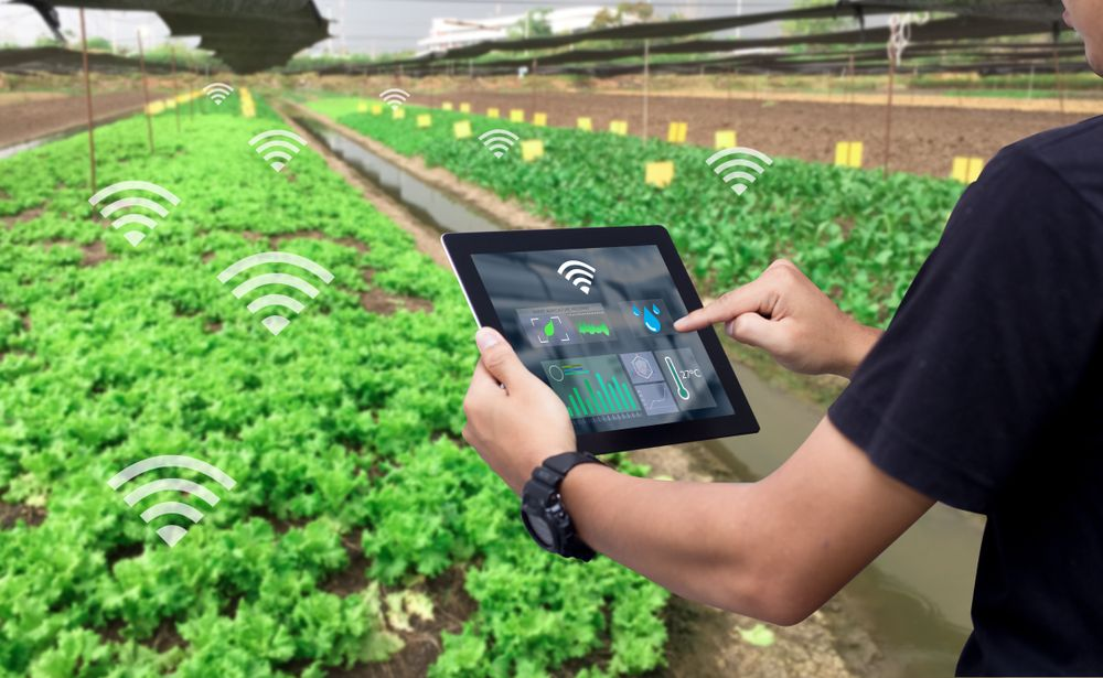 الأردن تطلق مسرعة الأعمال حصاد لدعم تكنولوجيا القطاع الزراعي