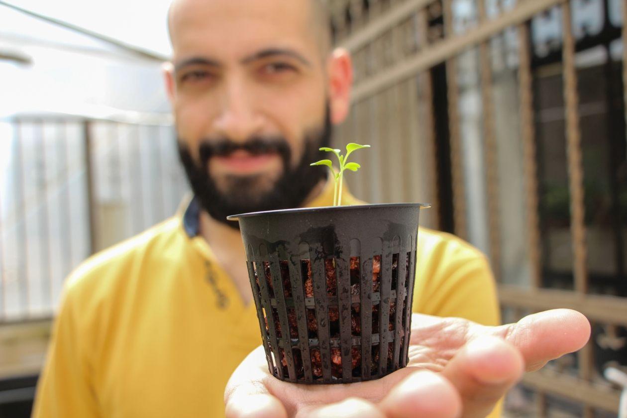 """مخترع فلسطيني يتوقع تحول كبير في الزراعة في الضفة الغربية بعد اللجوء للزراعة المائية """" أكوابونيكس"""""""