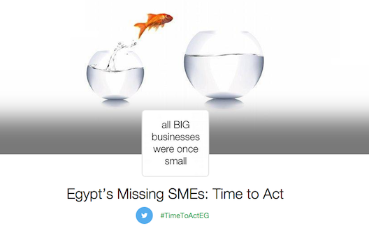 Egypt is in urgent need of smaller business