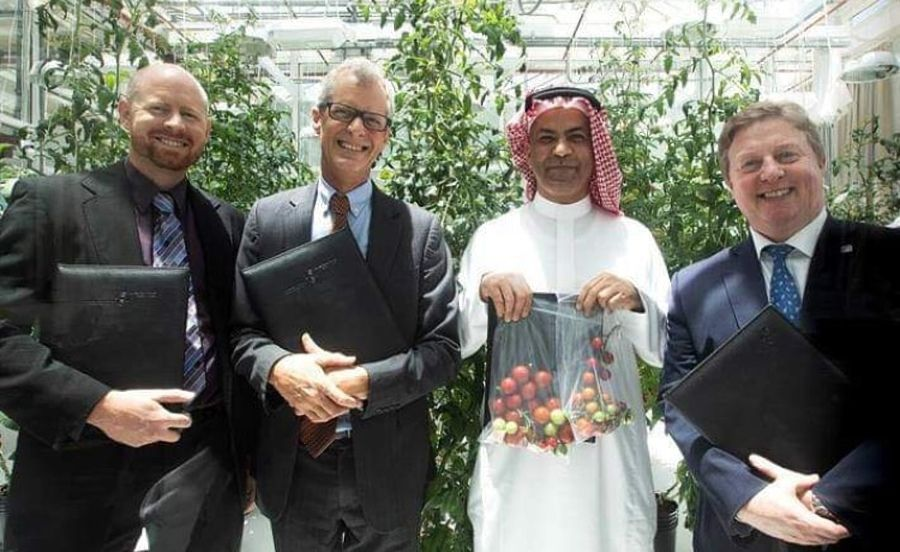 KAUST's Red Sea Farms closes $1.9m investment