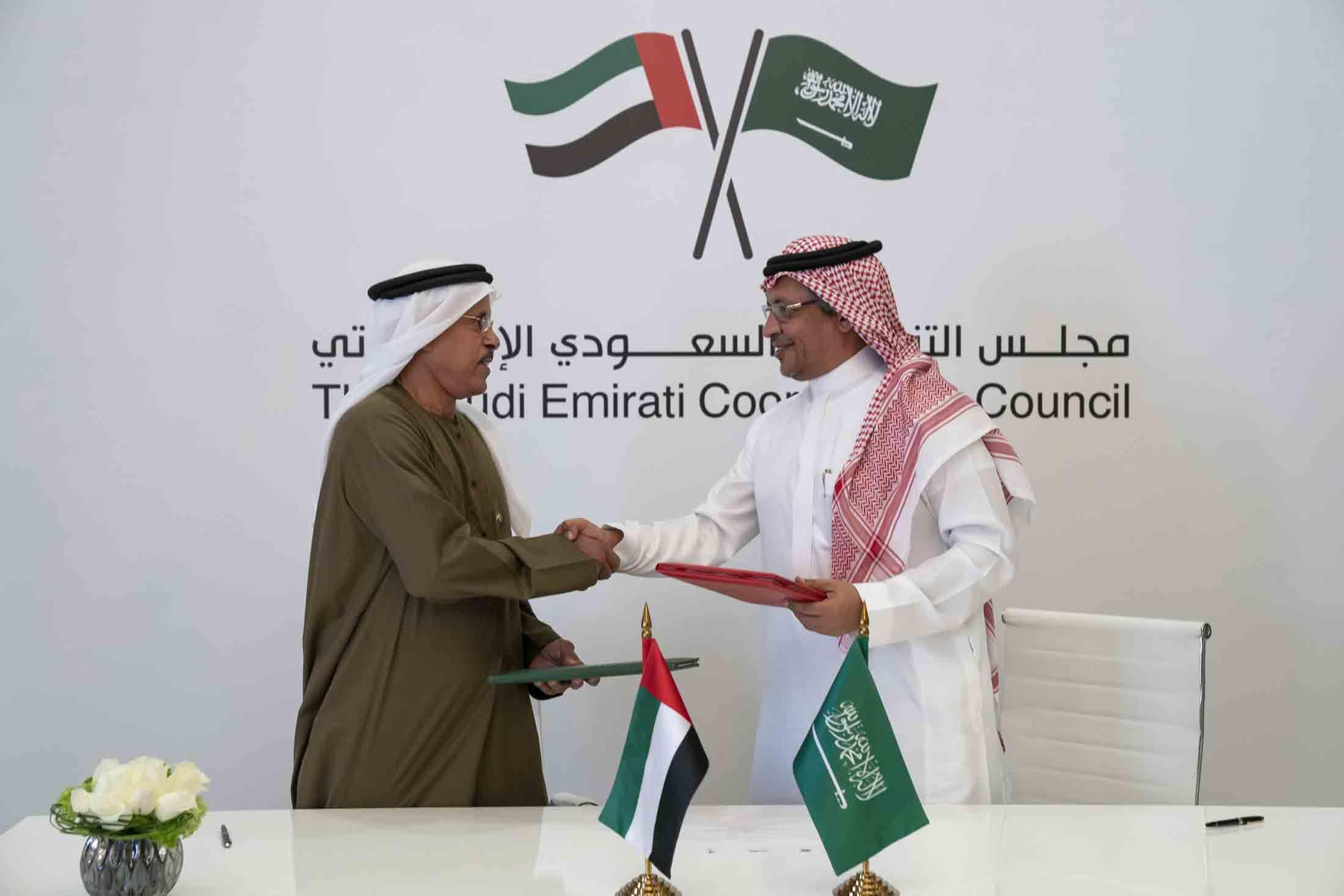 The benefits of the Saudi-UAE joint initiatives