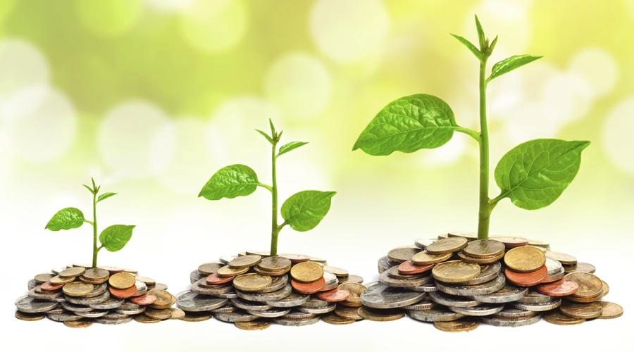 النمو السريع وعلاقته بنجاح الشركات الناشئة