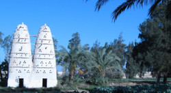 Egypt's Tourism Gets Back on Its Feet at Rouqayah's Ranch