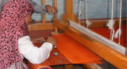 البنك الدولي يدعم 34 مشروعا اجتماعياً في مصر
