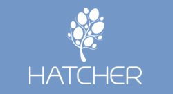 Hatcher announces new seed and Series A funding for MENA startups