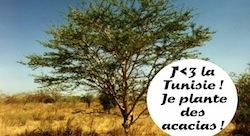 Des arbres pour donner le pouvoir aux femmes des villages tunisiens indépendantes