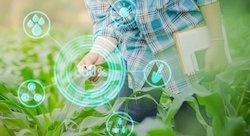 إقبال كثيف على التكنولوجيا الزراعية في لبنان