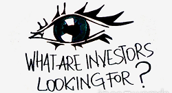 What Are Investors Looking For? [Pic of the Week]