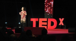 How do you plan a successful TEDx?