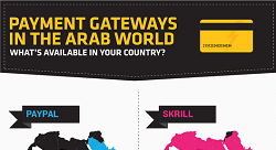 Payment Gateways in the Arab World: 2013 [Infographic]