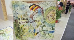 What did Morroco gain with COP22?
