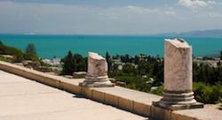 ما هو دور المغتربين التونسيين في تحفيز الريادة في تونس؟