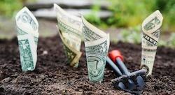 عشر نصائح للشركات الكبرى الساعية إلى الاستثمار في الشركات الناشئة [رأي]