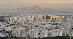 الشركات الناشئة في تونس تخوض معركة صعبة للتوسّع