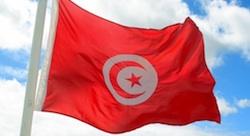 ويكي ستارت اپ: احتضان جيل جديد من التونسيين